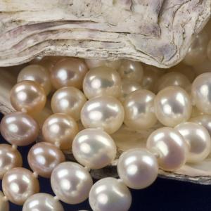 Pearls1